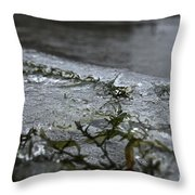Frozen Milfoil Throw Pillow