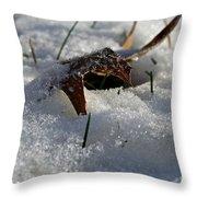 Frozen Oak Throw Pillow