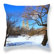 Frozen Over Throw Pillow