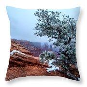 Frozen Overlook Throw Pillow