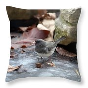Frozen Pond Throw Pillow