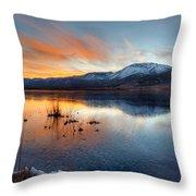Frozen Reflections Throw Pillow
