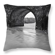 Frozen Schuylkill River Throw Pillow