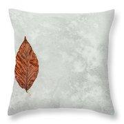 Frozen Seasons Throw Pillow