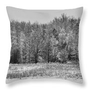 Frozen Throw Pillow by Sebastian Musial