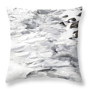Frozen Shoreline Throw Pillow