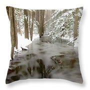 Frozen Stream Throw Pillow