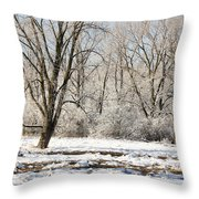 Frozen Swamp Throw Pillow