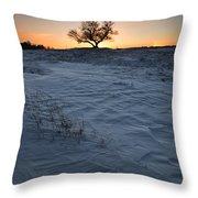 Frozen Tree Of Wisdom Throw Pillow