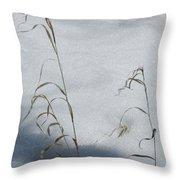 Frozen Wheat Throw Pillow