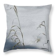 Frozen Wheat Throw Pillow