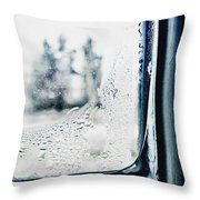 Frozen Windowpane Throw Pillow