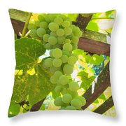 Fruit Of The Vine - Garden Art For The Kitchen Throw Pillow
