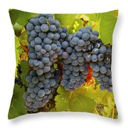 Fruit Of The Vine Imagine The Wine Throw Pillow