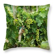 Fruit On The Vine Throw Pillow