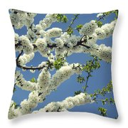 Fruit Tree Blooms Throw Pillow