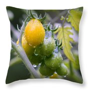 Fruits Of Our Labours Throw Pillow