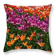 Fruity Tulips Throw Pillow