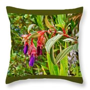 Fuchsia Along The Trail To Huayna Picchu-peru Throw Pillow