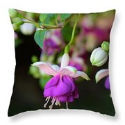 Fuchsia Birthday Card Throw Pillow