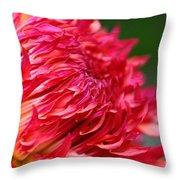 Fuchsia Flames Throw Pillow