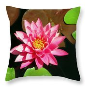 Fuchsia Pink Water Lilly Flower Floating In Pond Throw Pillow