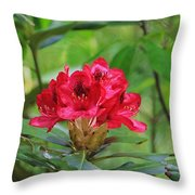 Fuchsia Rhododendron Moore State Park Throw Pillow