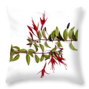 Fuchsia Stems On White Throw Pillow