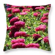Fuchsia Zinnia Throw Pillow
