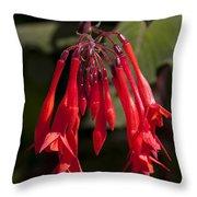Fucshia Red Flower Throw Pillow