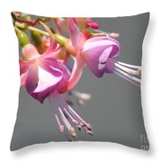 Fucsia Throw Pillow