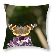Fueling Throw Pillow