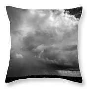 Fueling The Farm Throw Pillow