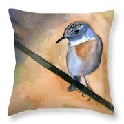 Fuerteventura Chat Throw Pillow