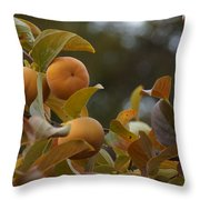 Fuju Persimmons In The Tree Throw Pillow