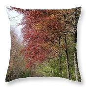 Fulfilled Throw Pillow