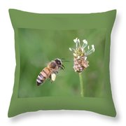 Full Basket Of Plantain Pollen Throw Pillow