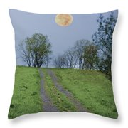 Full Moon And A Country Road Throw Pillow