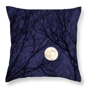 Full Moon Bare Branches Throw Pillow