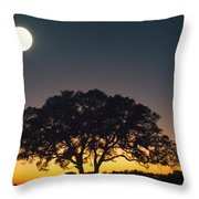 Full Moon Over Silhouetted Tree Throw Pillow