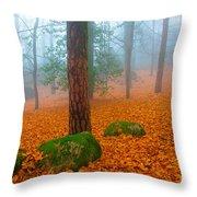 Full Of Autumn Throw Pillow