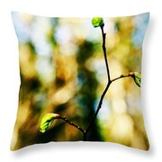 Full Of Life 6 Throw Pillow by Yevgeni Kacnelson
