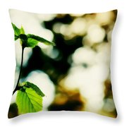 Full Of Life 9 Throw Pillow