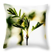 Full Of Live 5 Throw Pillow