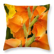 Full Stem Gladiolus Throw Pillow