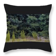Full Velvet Throw Pillow