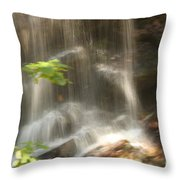 Fuller Falls Throw Pillow