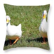 Fun Ducks Throw Pillow
