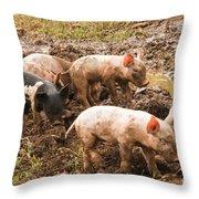 Fun In The Mud Throw Pillow