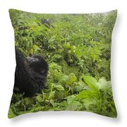 Fun Times In The Rainforest Throw Pillow